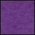 240-Iris purple